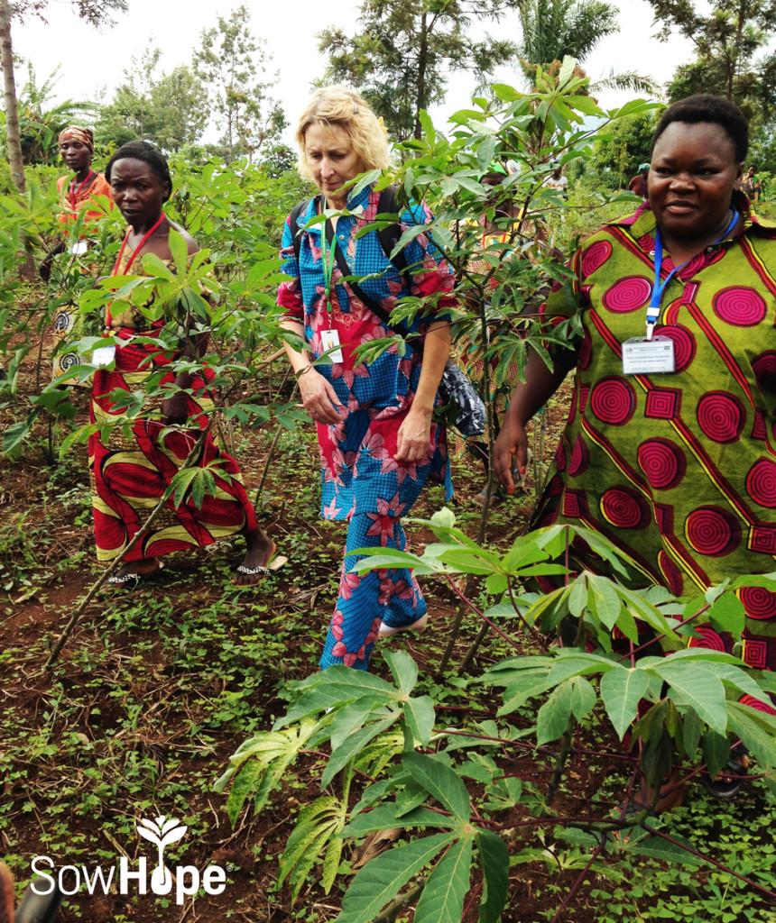 Cassava farming in DRC.